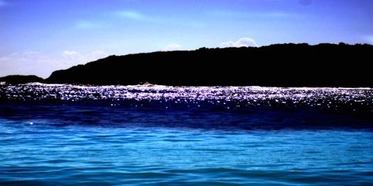 Navio Beach in Vieques Island