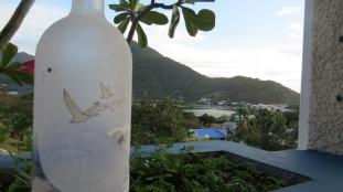 """The """"goose"""" was loose in Sint Maarten!"""