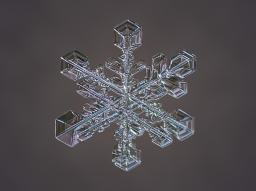 a6d78bf0-94cc-11e3-a6b1-df3f05506330_5_CATERS_Incredible_Micro_Snowflakes_06