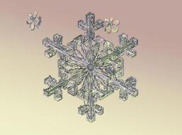 a94a39a0-94cc-11e3-bf0e-4b280fb0c1f5_2_CATERS_Incredible_Micro_Snowflakes_03