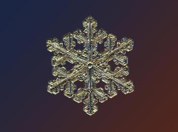 c17ada20-94cc-11e3-bb49-8d79c730f8d4_14_CATERS_Incredible_Micro_Snowflakes_15